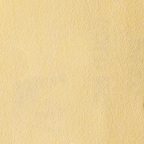 Disques abrasifs Gold NC Ø 125 mm 8 trous